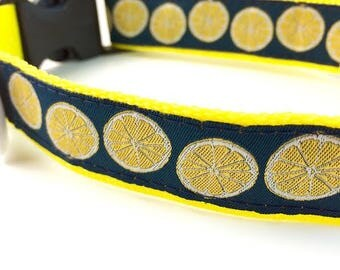 Lemon Dog Collar | Lemon Dog Leash | Lemon Step In Harness | Personalized Dog Collar | Fruit Dog Collar | Food Dog Collar