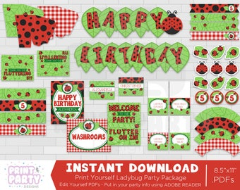 Printable Ladybug Birthday Party Decorations, Summer Ladybug Kids Birthday Party, Printable Ladybug Party, Print Yourself, Instant Download
