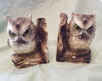 Pair of vintage Owl bird book ends