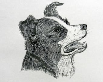 Custom Hand Drawn Pet Sketch in Pen and Ink. Unframed.