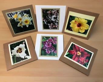 Set of 6 Photography cards, Flowers - blank inside