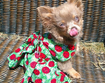 Dog Clothes - Chihuahua Clothes - Chihuahua Dress - Dog Dress - Small Dog Clothes - Harness Coat - Chihuahua - Dog Outfit - Ladybird