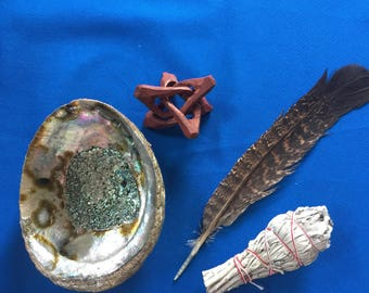 Abalone Shell or Lion's Paw Sage/Smudge Kit with Natural Turkey Feather and Stand  Cleansing, Space Clearing, Remove Negativity - stick or L