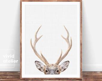 Deer Print, Deer Antlers, Woodland Nursery, Forest Animal Wall Art, Nursery Printable, Baby Woodland Print, Deer Poster, Nursery Decor, Art