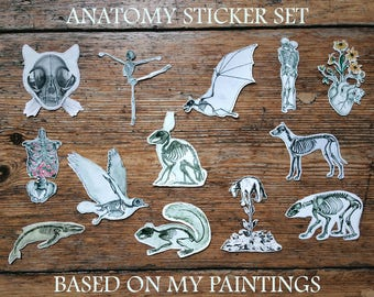 Anatomy Stickers Set | Planner Valentine's Day Love Gift | Cat Skull Wall Skeleton Art | Doctor Animal Science Biology Medical Student Goth