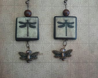 Earrings with Dragonflies