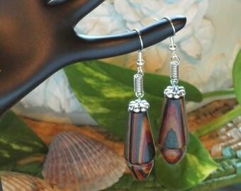 Colorful Wood Earrings - Teardrop Dangle style