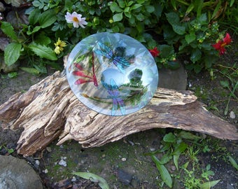 Dragonfly Birdbath on Reclaimed Wood