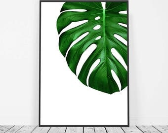 Tropical Print, Monstera Leaf Print, Tropical Decor, Tropical Wall Art, Monstera Deliciosa Leaf Art, Monstera Poster, Leaf Photography