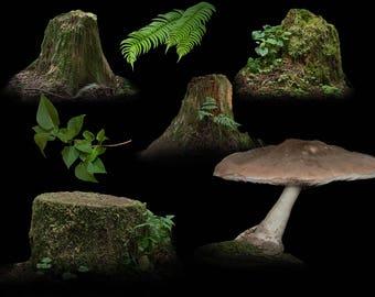 Fantasy Forest Tree Stump, Mushroom and Plant Overlays