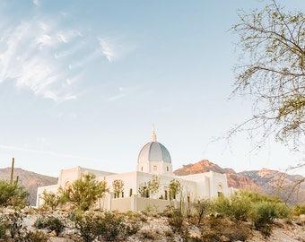 Tucson Arizona Temple 13