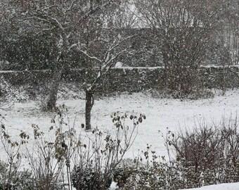 Original placemat laminated landscape snow