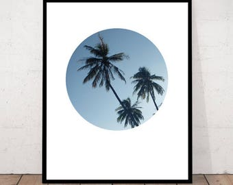 Art Print, Palm Tree Print, Palm Tree Art, Palm Print, Palm Trees, Photography Print, Circle Print, Palm Color, Palm Photography