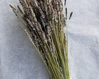 Organic CRAFT GRADE dried French lavender bundle / bunch / bouquet.  Highly fragrant! 2017 crop, ready to use!