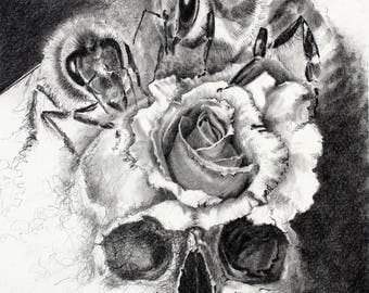 Critical Condition | Skull, Rose, Bees | Original Pencil Drawing