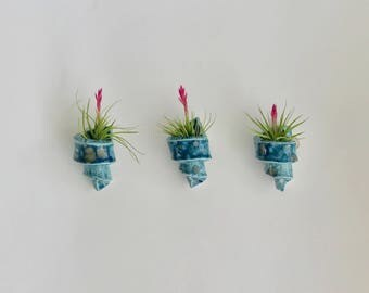 Set of 3 Handmade Spiral Air Plant Holders in Crystal Blue