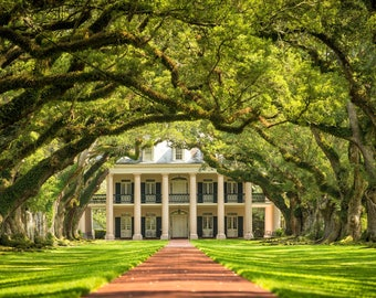 Oak Alley plantation canvas, New Orleans Canvas, Plantation canvas, Old South wall art, Canvas Gift, Oak Alley Plantation canvas