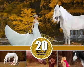 20 Majestic unicorn horse overlays, realistic animal, white horse, Photoshop overlays, fantasy, magic, fairy,  png