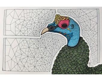 Turkey Vulture Print