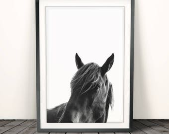 Horse Print, Horse Photo, Horse Photography, Horse Art, Instant Download, Horse Printable Art, Animal Poster, Horse Home Decor,Horse poster