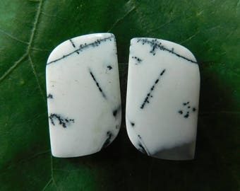 Fancy Natural Dendrite Agate Cabochon Loose Cabs Stone Beautiful Dendrite Agate Gemstone 15.75Cts. (21X13X3)mm (#860)