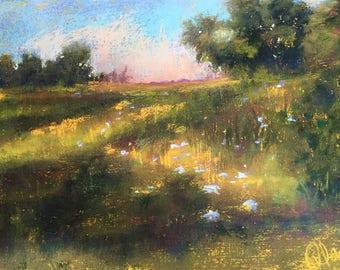 Annie's Fields