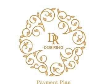 Payment Plan for alfy