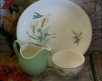 Mint Condition, Johnson Brothers Coffee/Tea Pot Set and Lid in Mint Green and Floral Design,