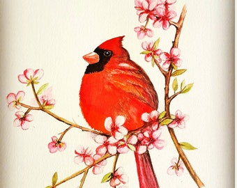 Original watercolor painting, red cardinal, bird art, wall décor, home décor, handmade, not print