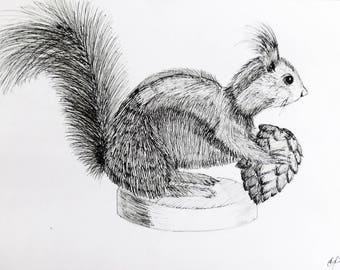 Squirrel drawing Etsy