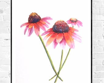 Original Flower painting-coneflower water color-sun hat Watercolor-colorful flower-floral water color-blooming art-floral illustration-Zen art