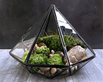Glass Geometric Diamond Shaped Terrarium