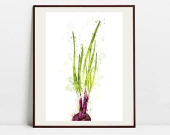 Spring Onion Watercolor Art Print, Spring Onion Illustration, Kitchen Wall art, Kitchen Wall Decor, Vegetable Print