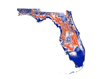 University of Florida Topographic Map