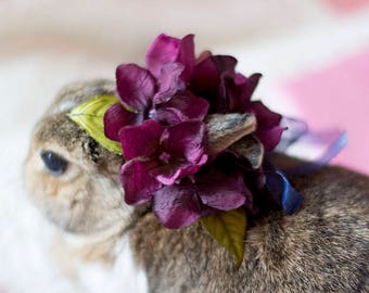 Falling For You Pet Flower Crown