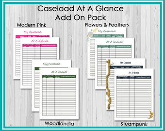 Add On: Caseload At A Glance