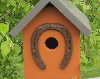 Birdhouse, Bird House, Bluebird Birdhouses,Rust,Gray,Western, Gift, Home, Garden