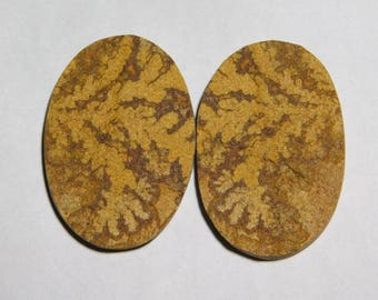 100% Natural Pair Fran Fossil Dendritic Druzy loose gemstone Amazing cabochon gemstone natural Excellent gemstone  99.30cts (42X28X4)MM