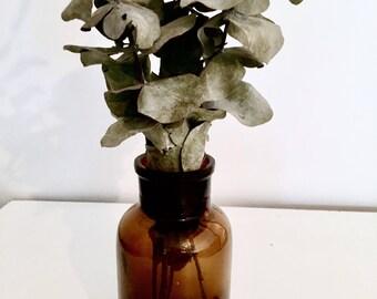 Apothicary bottle   Amber bottle   Glass bottle