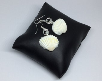 Real shell earrings