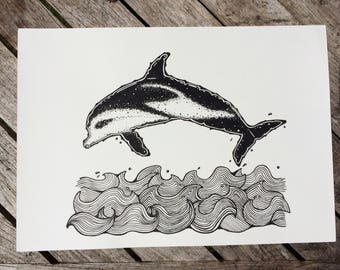 dolphin leaping ocean  illustration picture
