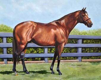 Bay Horse in Field