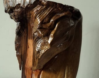 face of horse, carved wood horse