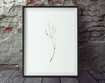 Nature Print, Digital Download, Botanical Wall Art, Printable Art, Minimalist Print, Illustration Print, Graphic Design Art, Twigs Print