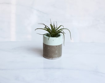 """Concrete Trinket Dish - Small Cylinder Pot - 2 1/4"""" Tall - Office Desk Decoration or Air Plant Holder - Custom Color"""