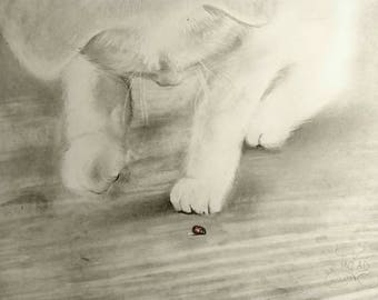 Drawing. Cat playing with Ladybug