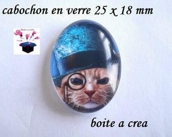 1 cabochon glass 25mm x 18mm Mr. cat
