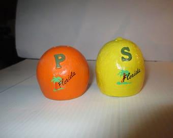 Florida lemon and orange shaker set