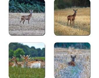 Set of 4 Deer drinks coasters featuring award winning photography by UniquePhotoArts.