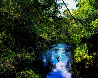 The Blue River Print